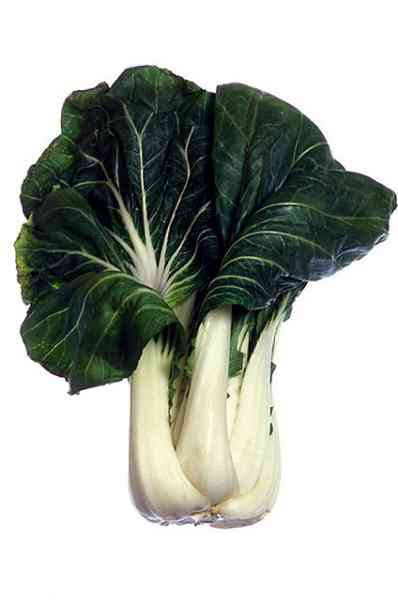 picture of bok choy