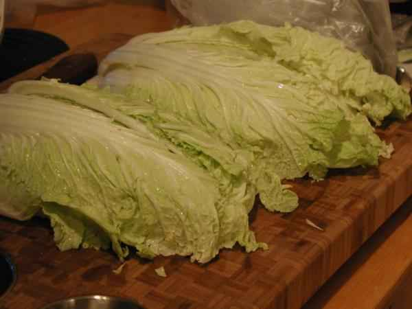 picture of Chinese cabbage (napa cabbage)