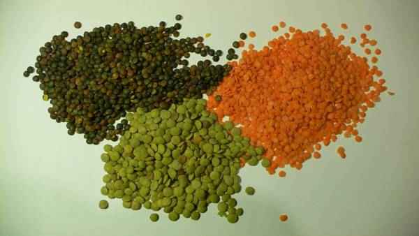 picture of lentils