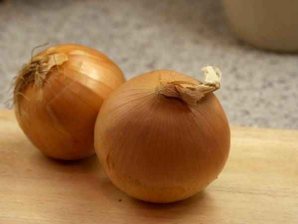 picture of onions